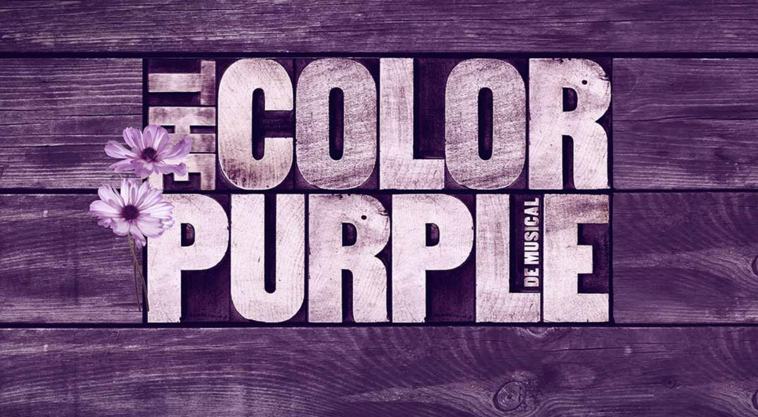 color-purple-logo-klein